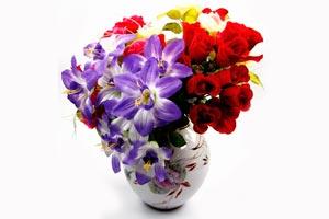 Como mantener con vida a las flores por mas tiempo