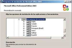 Solucionar el problema del doble acento en Outlook Express