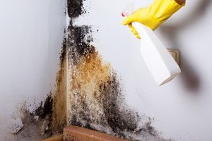 Tips para eliminar las manchas de humedad de una pared. Cómo quitar manchas de humedad de las paredes.