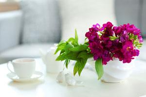 Tips para que las flores del florero duren mas tiempo. Cómo conservar las flores en un florero