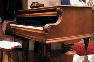 Cómo cuidar el piano de las polillas