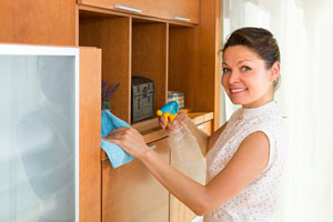 Muebles para la sala: Limpiar muebles cocina