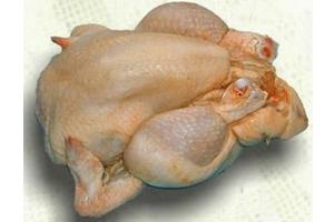 Cómo elegir un pollo fresco