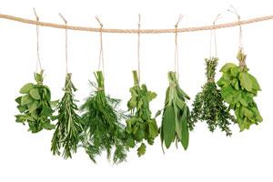 Cómo preparar un ramito de hierbas aromáticas o bouquet