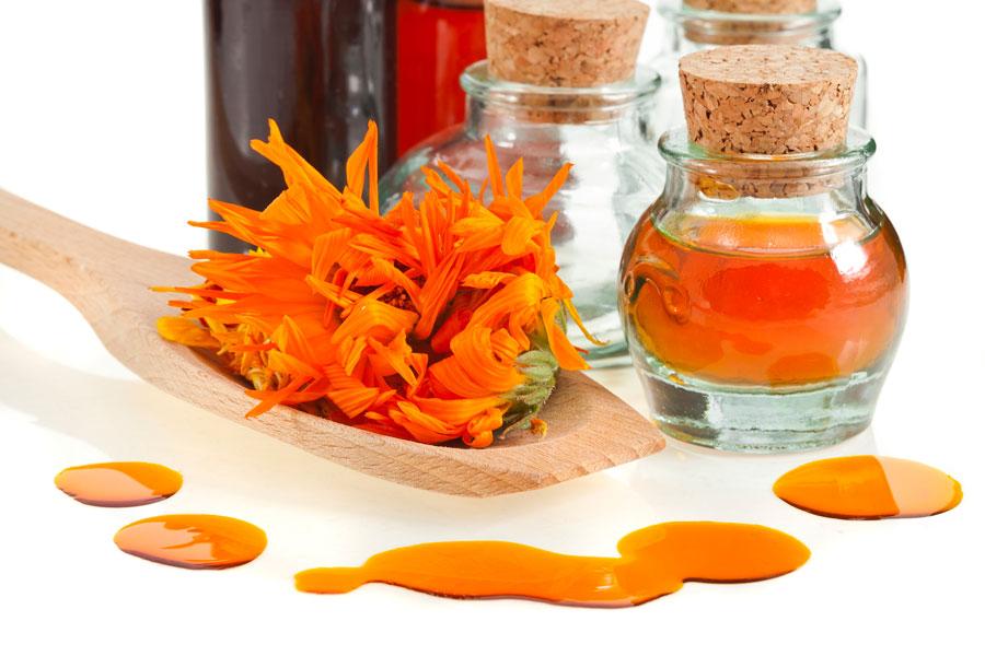 Cómo preparar Té, Aceite y Crema de Caléndula
