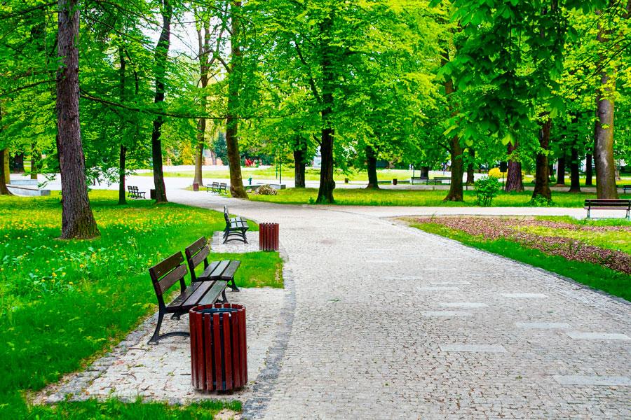 C mo disfrutar a fondo la naturaleza en los parques for Como iluminar un parque