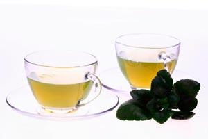 Cómo preparar el té de menta poleo