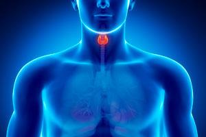 Cómo prevenir problemas de tiroides desde la alimentación. Qué alimentos nos ayudan a cuidar la tiroides. Consejos para cuidar de la tiroides