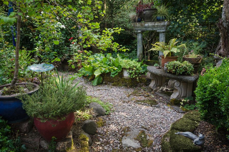 Plantas para jardines con poco sol o secos - Plantas para terrazas con mucho sol ...