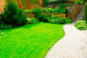 Guía para definir la parquización de nuestro jardín. Paso a paso, cómo diseñar un proyecto de parquización para el jardín
