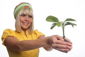 Cómo hacer un regalo verde y original