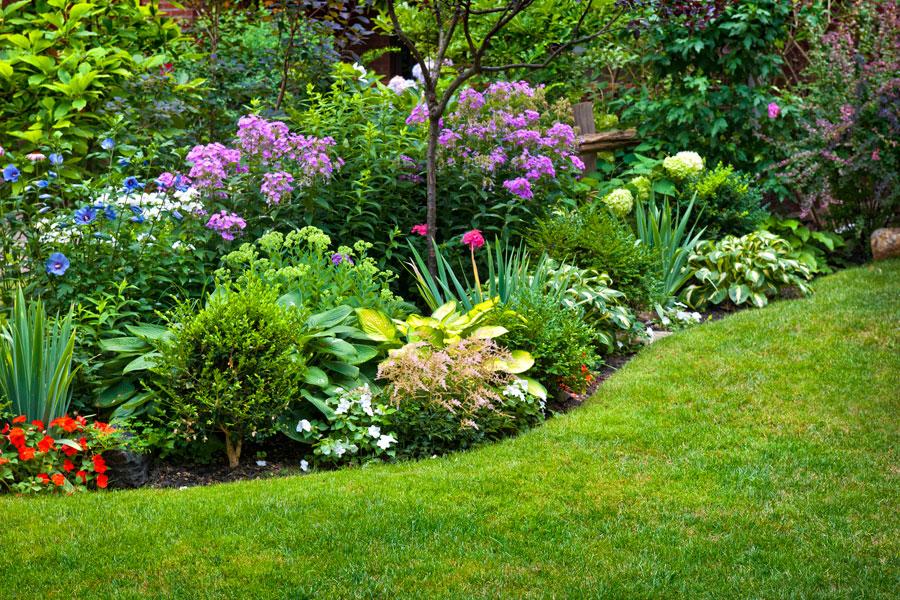 C mo dise ar un jard n que necesite poco mantenimiento - Jardines con poco mantenimiento ...