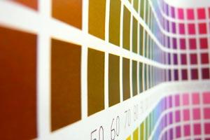 Cómo elegir el color indicado en cada ambiente del hogar