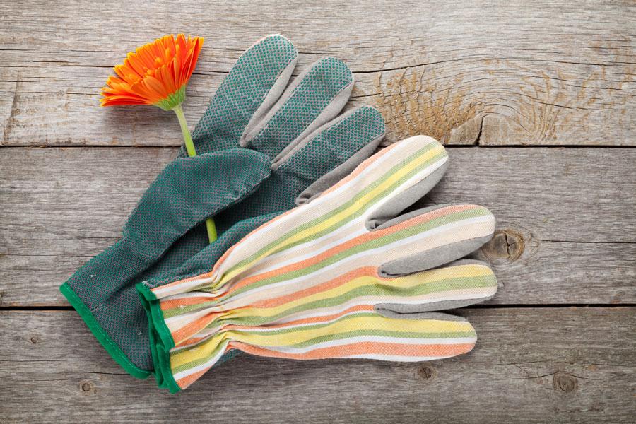 Cómo elegir los guantes para jardinería