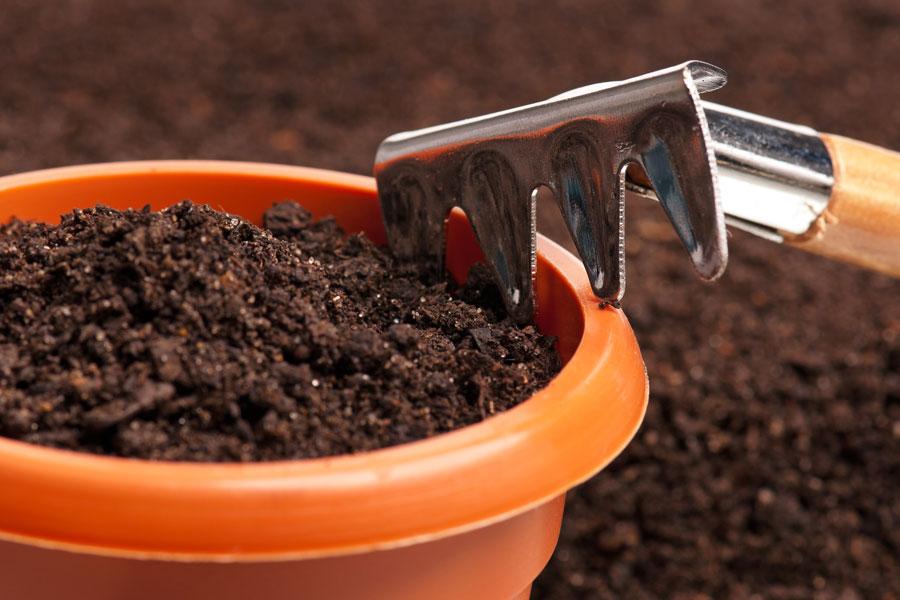 C mo hacer abono casero en un lugar cerrado - Abono organico para plantas ...