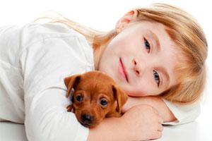 Cómo saber si puedo tener un perro de mascota