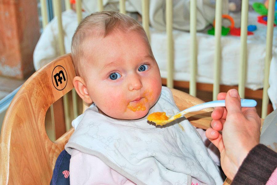 Comidas caseras para bebes de 9 meses. Recetas para bebes. 3 recetas para hacer comida casera para bebes de 9 meses. Alimentos para bebés de 9 meses