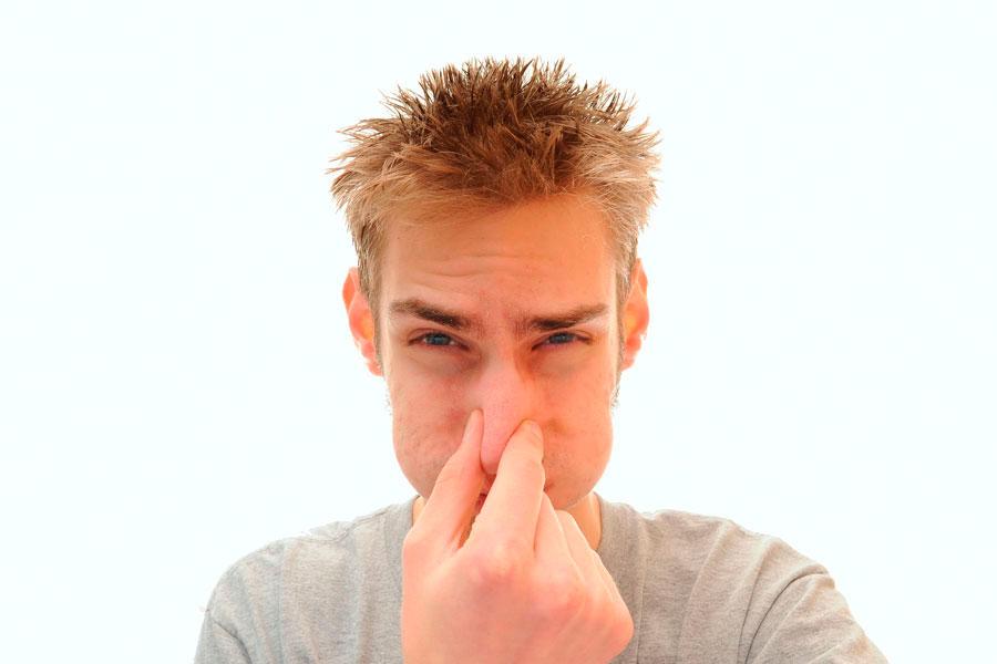 Producto casero para eliminar olores - Malos olores en casa ...