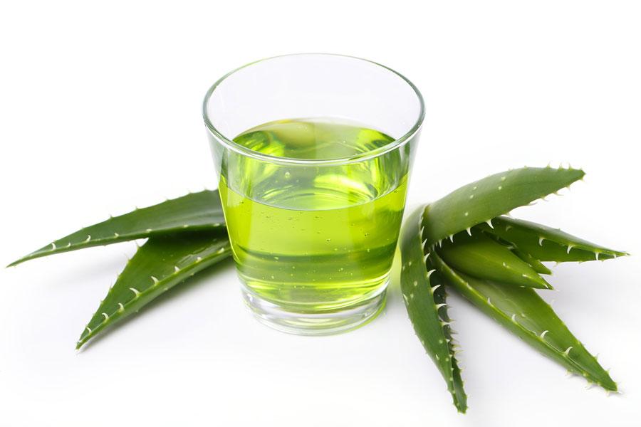 Propiedades y beneficios de las plantas medicinales. Propiedades de plantas medicinales más comunes. Las mejores plantas medicinales y sus usos