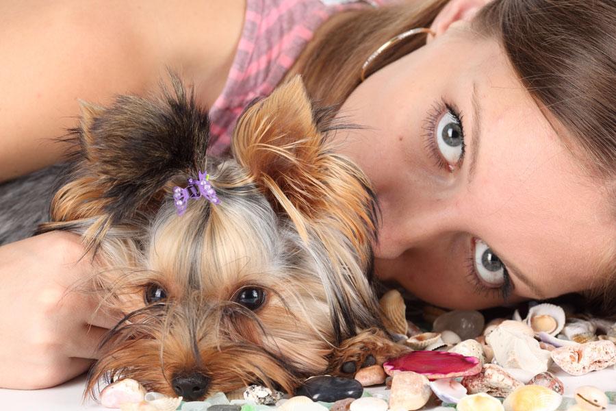 Tips para tener perro en casa siendo alérgico. Como aliviar la alergia a los perros en casa. Como limpiar la casa si tienes perro y eres alérgico