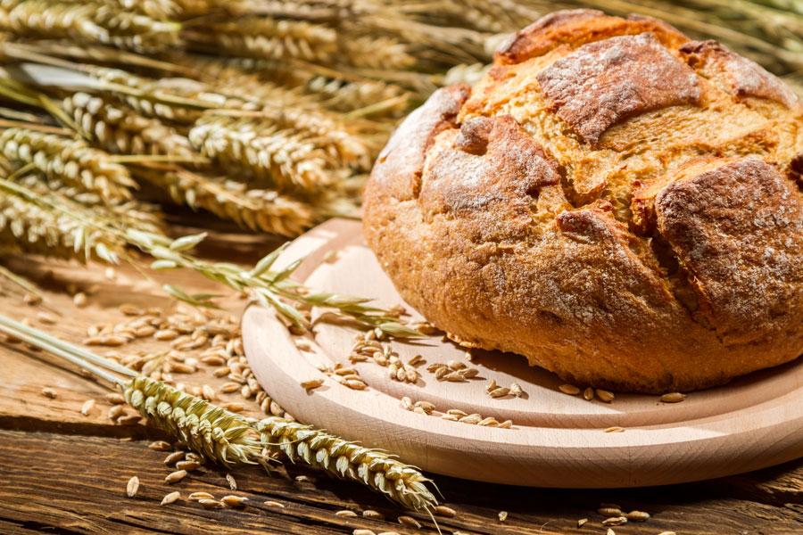 Ingredientes para hacer pan campesino. Cómo preparar pan campesino en casa. Pasos para hacer pan campesino casero