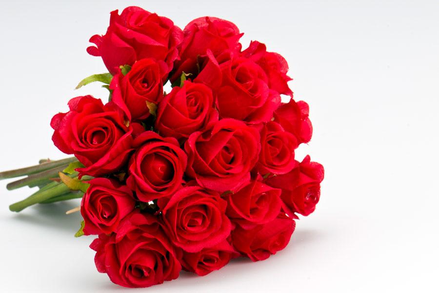Métodos para cultivar rosas sin semillas. Cómo plantar una rosa por esquejes. Guía para cultivar rosas sobre tierra. Cultivar rosas en una patata