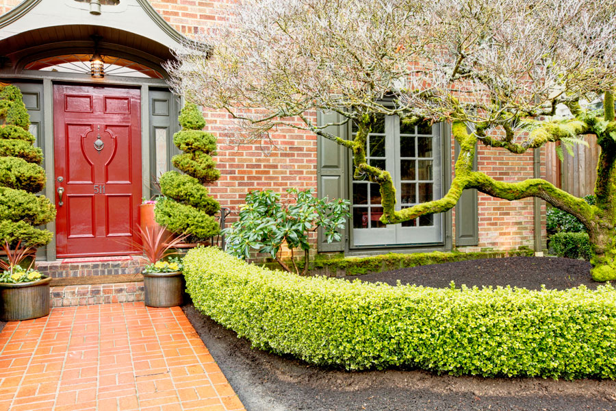 Cómo hacer puertas con molduras decorativas. Pasos para decorar las puertas con molduras. Guía para decorar puertas usando molduras