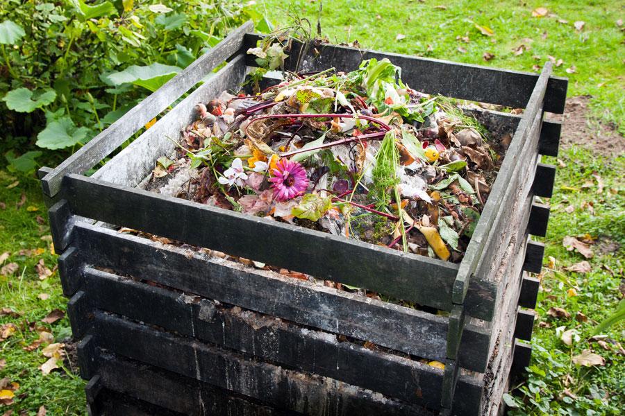 Desechos que no hay que poner en el compost casero. Cómo hacer abono casero con desechos. Ingredientes que no debes poner en la compostera