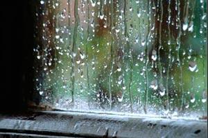 Cómo mantener el clima interno del hogar durante tormentas. Consejos para que no se filtre el frío o el calor.
