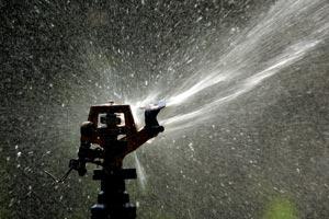 Consejos para realizar un riego efectivo, evitando el malgasto de agua