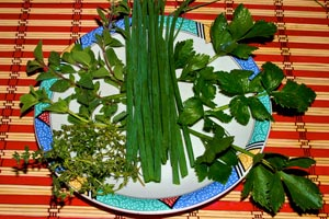 Cómo hacer una huerta hogareña para ahorrar y consumir vegetales sanos