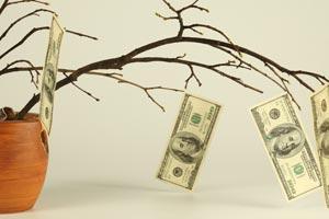 Consejos para llevar a cabo un plan de ahorro doméstico