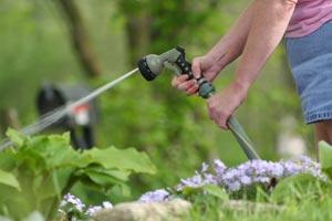 Consejos para ahorrar en el consumo de agua potable cuando regamos el jardín
