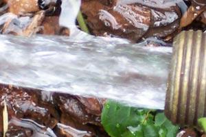 Cómo usar elementos naturales para limpiar las superficies del hogar