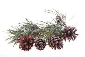 Ideas para decorar la casa en Navidad sin gastar demasiado.